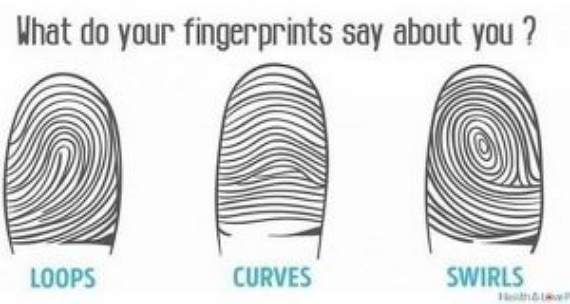 Your finger length could say things about you! 3