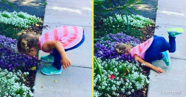 Pictures of children doing hilarious things