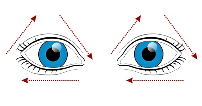 10 Best Exercises For Providing A Great Vision To Your Eyes 3