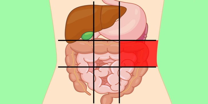 6 Belly Map Shares By The Doctor That Would Tell The Reason Why Your Stomach Is Hurt 5