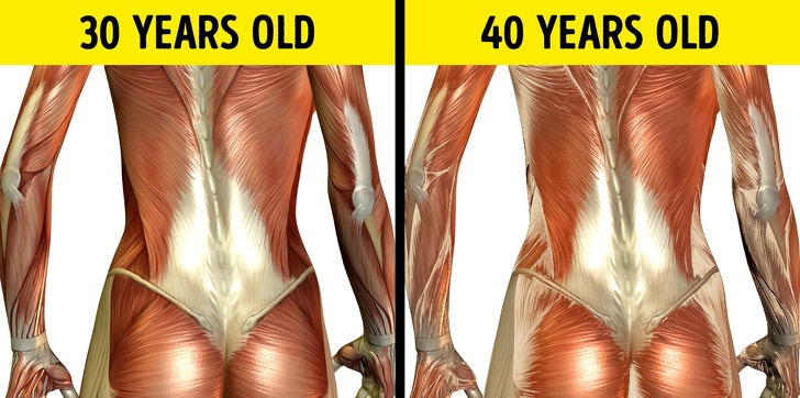 24 Changes That Take Place In A Human Body Every 10 Years 4